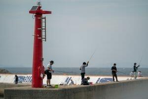 best pier fishing rod
