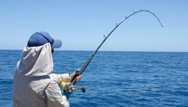 best shark fishing rods