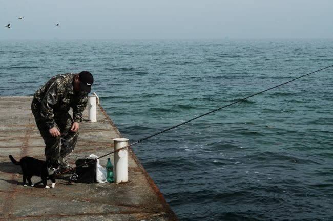 pier fishing rod setup