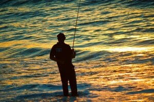 Best Bait for Striped Bass