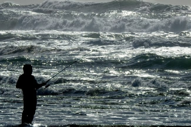 Best Surf Fishing Baits