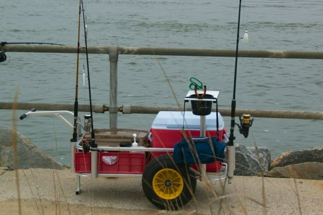 Best Fishing Carts