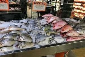 Best Florida Fish to Eat